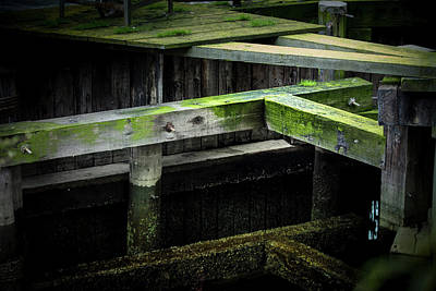 Photograph - Shape And Green Rot No.9 by Juan Contreras