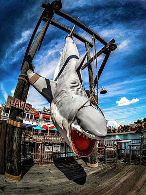 Photograph - Shark Catch by Carlos Diaz