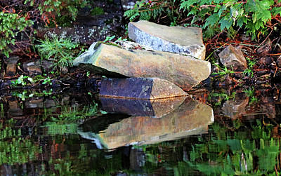 Kitchen Collection - Shawanaga Rock And Reflections VIII by Debbie Oppermann