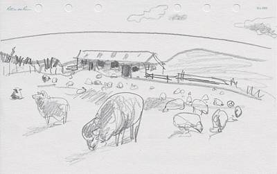 Drawing - Sheep On Chatham Island, New Zealand by Abby McBride
