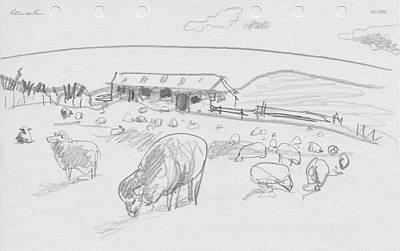 Sheep On Chatham Island, New Zealand Art Print