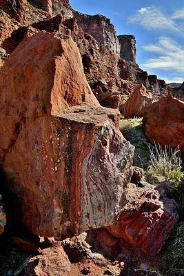 Kim Fearheiley Photography - Sheer Canyon Walls above Colorado River by Ray Mathis