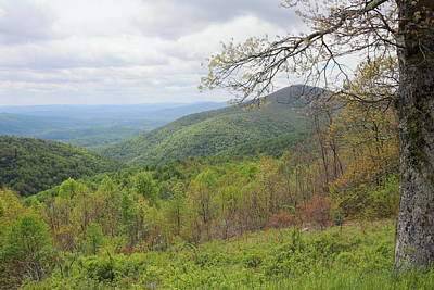 Photograph - Shenandoah National Park 3335 by John Moyer
