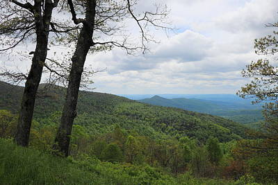 Photograph - Shenandoah National Park 3338 by John Moyer