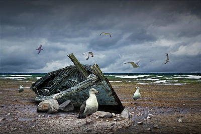 Photograph - Shipwrecked Wooden Boat On A Beach With Gulls by Randall Nyhof