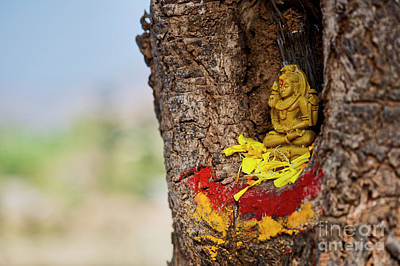 Photograph - Shiva Shrine by Tim Gainey