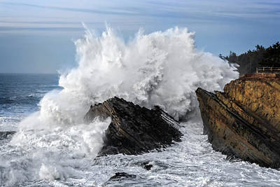 Photograph - Shore Acres Waves by Wes and Dotty Weber