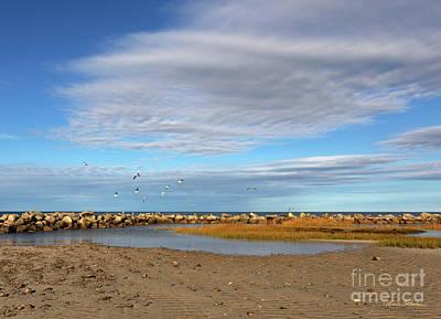 Photograph - Shoreside Serenity Cape Cod by Michelle Constantine