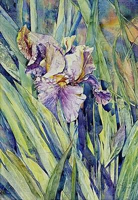 Western Art - Shrimps Iris by Annika Farmer