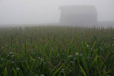 Photograph - Shrouded Barn Rising by Dylan Punke