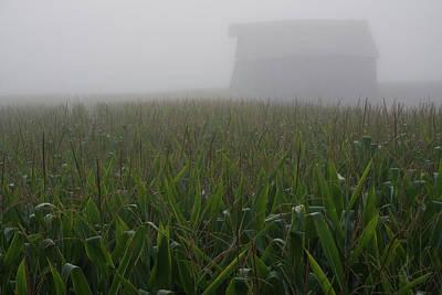 Photograph - Shrouded Barn Rising by Dylan Punke
