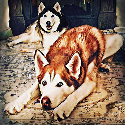 Photograph - Siberian Huskies At Rest A22119 by Mas Art Studio