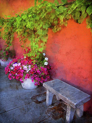 Photograph - Sidewalk Floral In Brownsville by Thom Zehrfeld