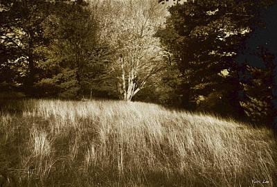 Photograph - Sidney's Meadow by Yuri Lev