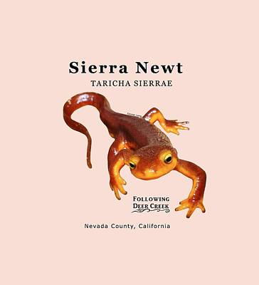 Digital Art - Sierra Newt - Black Text by Lisa Redfern