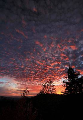 Photograph - Sierra Skies by Sean Sarsfield