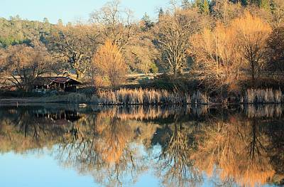Photograph - Sierra Winter Pond by Sean Sarsfield