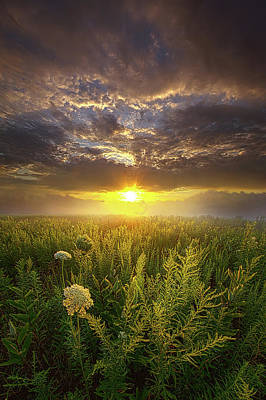 Photograph - Silence Is The Language Of God by Phil Koch