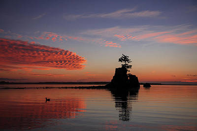 Photograph - Siletz Bay Sunset With Gull by Mary Jo Allen