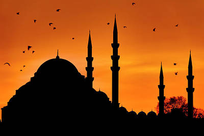 Photograph - Silhouette Of The Suleymaniye Mosque by Fabrizio Troiani