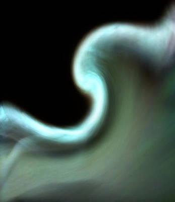 Photograph - Silk Glove by Maria Reverberi