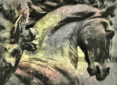 Photograph - Silver And Gold  Art by JAMART Photography