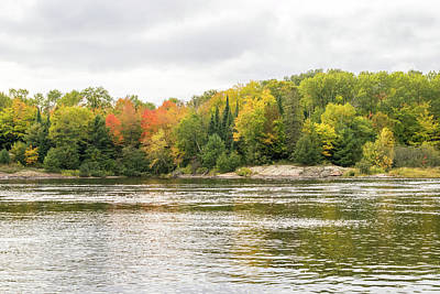 Photograph - Silver And Gold Currents - Mississagi River Autumn by Georgia Mizuleva