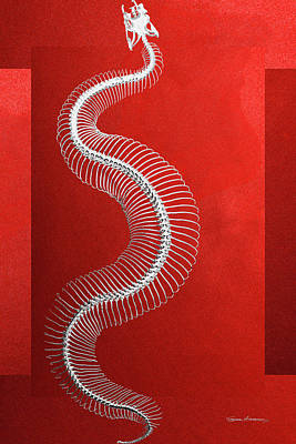 Digital Art - Silver Snake Skeleton Over Red Canvas by Serge Averbukh