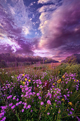 Photograph - Simple Pleasures by Phil Koch