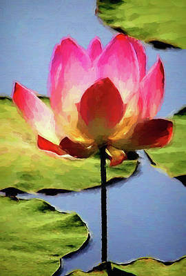Photograph - Single Lotus Blossom by HH Photography of Florida