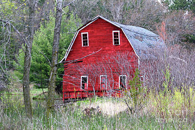 Photograph - Sinking Barn by Sheila Skogen
