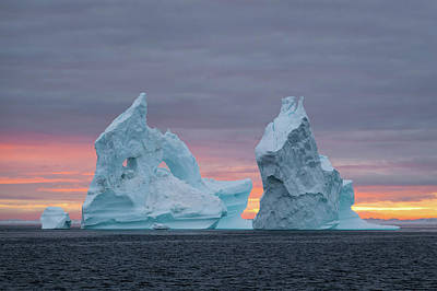 Photograph - Sister Icebergs by Michael Blanchette
