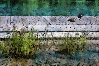 Digital Art - Sitting On The Dock  by Leslie Montgomery