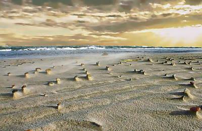 Photograph - Skagen Peninsula by Anthony Dezenzio