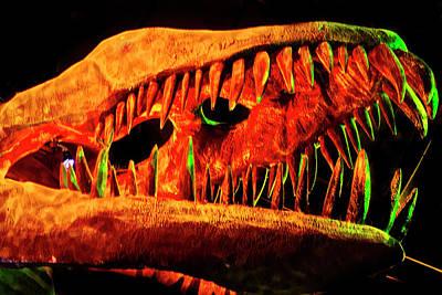 Photograph - Skull Of A Plesiosaur by Miroslava Jurcik