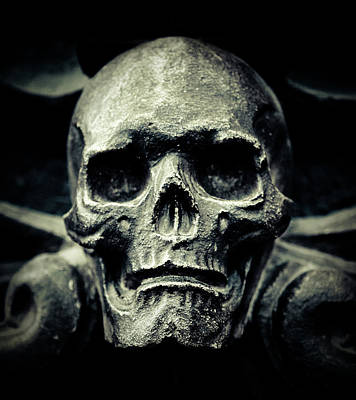 Photograph - Skull by Thepalmer