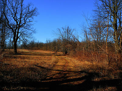 Photograph - Sky Meadows State Park Va Section 4 Blue Bird 2 by Raymond Salani III