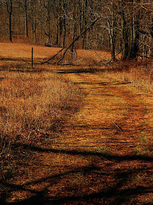 Photograph - Sky Meadows State Park Va Section 4 by Raymond Salani III