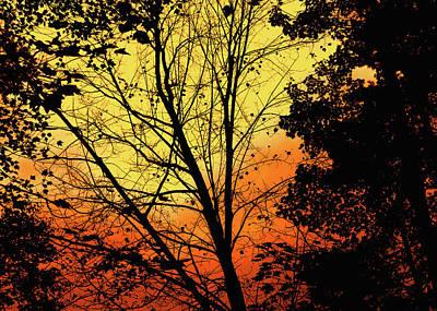 Photograph - Sky On Fire by Bob Orsillo