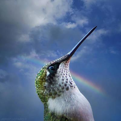 Hummingbird Wall Art - Photograph - Sky Trooper by Jerry LoFaro