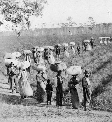 Slaves In The Cotton Fields Art Print by Fotosearch