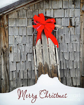 Photograph - Slay Merry Christmas by Alana Ranney