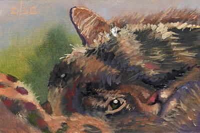 Painting - Sleep N' Peek by David Bader