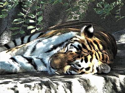 Digital Art - Sleeping Tiger by Diane Chandler