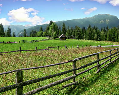 Photograph - Slovenia Meadow Landscape by Anthony Dezenzio