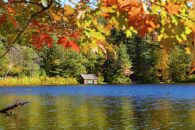Photograph -  Small Pond Chocorua New Hampshire by Jeff Folger