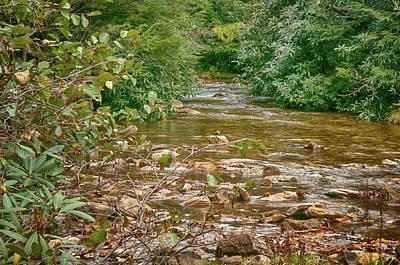 Photograph - Small Stream by Dan Urban