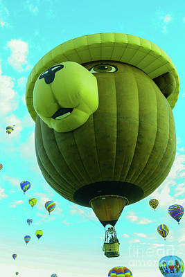 Royalty-Free and Rights-Managed Images - Smokey the bear balloon by Jeff Swan
