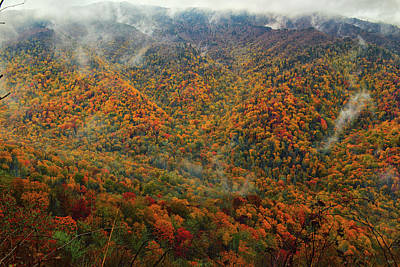 Photograph - Smoky Autumn by Greg Norrell