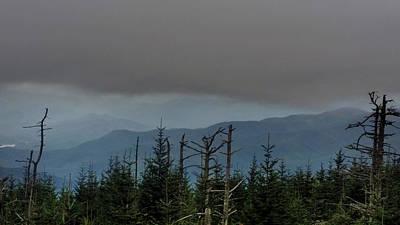 Priska Wettstein Pink Hues - Smoky Mountain Magic  by Ally White